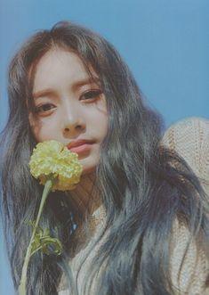 "[Twice]~Tzuyu Photobook ""Yes, I am Tzuyu Photobook Scans. Twice Tzuyu, Twice Dahyun, Nayeon, Twice Album, K Wallpaper, Twice Once, Twice Kpop, Aesthetic Pictures, Photo Book"