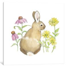 "Lark Manor Wildflower Bunnies I Graphic Art on Wrapped Canvas Size: 37"" H x 37"" W x 0.75"" D"