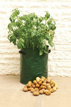 splendidsun 2 in 1 Plastic Nursery Pot,Potato Planter Pots Potato Onion Garden Seedlings Pots Outdoor Indoor Plant Container Grow Pots for Grow Vegetables Carrot