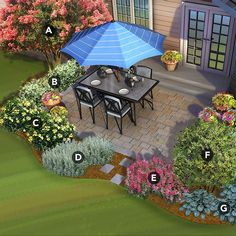 South patio landscaped with crape myrtle, confederate jasmine, Knock Out rose…