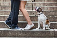 Fotografias de casamentos por Emin Kuliyev