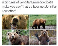 Thats a bear not Jennifer Lawrence