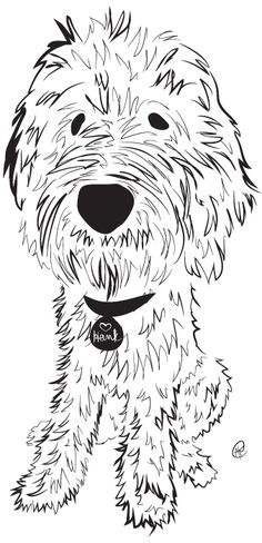 goldendoodle puppy coloring pages - photo#7