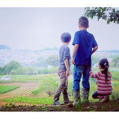 【tabica_gx】さんのInstagramをピンしています。 《TABICAの大人気ホスト、 アレックスさんの旅のサポートに行ってきました♪ 横浜なのに、豊かな自然に囲まれたトトロの森🌳  参加してくれた子どもたち3人、 大自然の中、元気に仲良く走りまわっていてとても可愛かった💓  #秋 #子ども #横浜 #トトロ #写真 #OLYMPUSpen #旅 #自然 #田舎暮らし #農作業 #ジブリ #森 #スローライフ #日本 #写真好きな人と繋がりたい #ファインダー越しの私の世界 #カメラ #風景 #森 #sunset#film#rurallife#healthylifestyle#ilovejapan#traveljapan#organiclife#slowlife#instajapan#ruraltourism#TABICA》