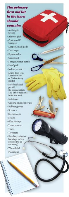 equine first aid, horse choking, horse wound, equi-health, horse first aid You will need a first aid kit so this list may help! My Horse, Horse Riding, Horse Gear, Pusheen, Horse Information, Horse Care Tips, Horse Facts, Horse Supplies, Horse Grooming Supplies