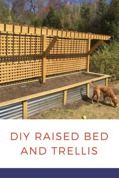 Raised Bed and Trellis - She saw this gorgeous idea floating around Pinterest and had to make it. Look what she did in her backyard!