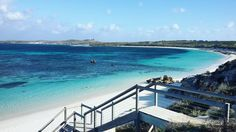 Round and round - Imagine dragons  #mornings#rotto#rottnestisland#wa#australia#clearwater#cystalclear#bluejacuzziblue#applepie#salmonbay#run#paradise#work#thelane#family#qualitytime#travel#world @placestobeseen @rottnestislandwa by unecaro http://ift.tt/1L5GqLp