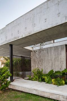 Amado Cattaneo Arquitectos Modern Tropical, Tropical Houses, Indoor Outdoor, Outdoor Decor, Modern Exterior, Home Deco, Garden Landscaping, Architecture Design, Concrete
