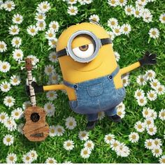 Minion and daisies.