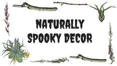 Naturally spooky decor for all of your October and Halloween decorations.