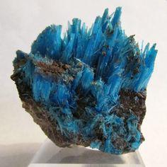 Mineral Specimen - Chalcanthite (primary), The Planet Mine, La Paz Co., Arizona