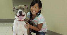 A 9 anni Sadie spiega perché adottare un cane
