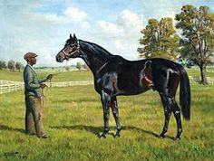 Voss, Franklin B. - Ardan and Groom A major stakes winner every year from two to five, Ardan won 16 stakes and championship honors at three and four in his native France.