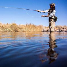 Skills Fly Fishing Tips, Gone Fishing, Carp Fishing, Best Fishing, Saltwater Fishing, Fishing World, Fishing Life, Fly Casting, Fly Shop