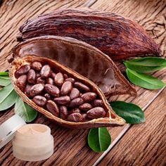 Lippenbalsam mit Kakaobutter
