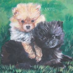 """A Pomeranian dog art portrait print of an LA Shepard painting 12x12"""". Here's a wonderful tribute to your best friend and favorite breed- the Pomeranian ! from an original painting by L.A.Shepard, whose unique, beautiful work has been collected around the world. Your print will be individually signed under the image by the artist, and initialed on the image. Copyright text is for display purposes only and will not appear on your artwork. The image is 12x12 inches and is printed on 13x19""""…"""