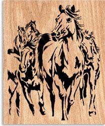 ausmalbilder wendy - ausmalbilder für kinder   pferde