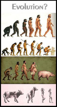 Darwinism Collection [Roberto Rizzato (Pix Jockey)] (Evolución - Evolution) Funny Signs, Funny Jokes, Hilarious, Bible Humor, Creation Art, Tumblr Love, Social Art, Christian Humor, Adult Humor