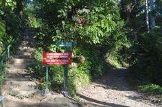 MyPerception: Amazing Banyuwangi : Sukamade