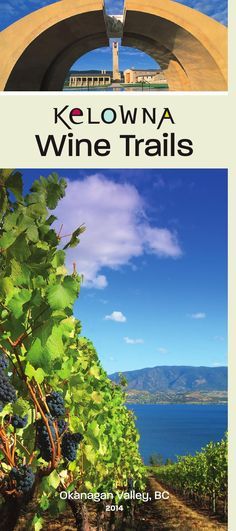 The Okanagan is the heart of BC wine country - dig a little deeper and you'll also discover that Kelowna is the birthplace of BC Wine. In this guide you'll get a taste of what lies ahead along each of the 5 Kelowna Wine Trails which feature over 25 w. Things To Do In Kelowna, Wine Vineyards, Wine Sale, Canadian Travel, In Vino Veritas, Italian Wine, Wine Country, Tourism, Wineries