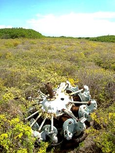 Abandoned engine on old landing strip, Tintamarre Island