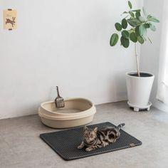LITMAT™ Cat Litter Mat – TugNPup Cat Litter Mat, Litter Box, All Types Of Cats, Urine Stains, Cute Cats And Kittens, Clean House, Things That Bounce, Your Pet, Hardwood