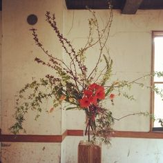 Love the look of this arrangement - long natural branches, and then a close burst of color in the center.  A clear vase anchors it all.