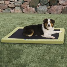 Welcome the next revolution in pet bedding with the K&H Pet Products Comfy N' Dry Indoor & Outdoor Dog & Cat Bed. Providing state-of-the-art orthopedic support, this bed also allows water to run completely through it while staying totally dry. It's perfect for use around the pool, and comfortable enough to use as regular bed inside the home. The unique, water-resistant core is 100% recyclable, and the polyester edge is treated to be UV fade-resistant. And most importantly, it ...