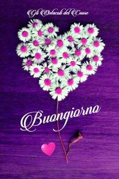 Simpatiche immagini Buongiorno 202 Beautiful Morning, Good Morning, Italian Memes, Start The Day, Thankful, Floral, Pink, Italy, Sicilian
