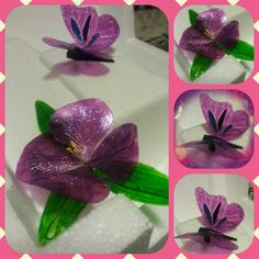 Gelatin Flower and Butterfly