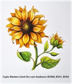Sunflower Power Poppy Debbie Olson Copics