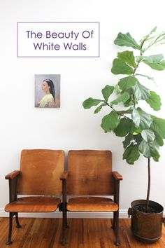 The simplicity and beauty of white walls