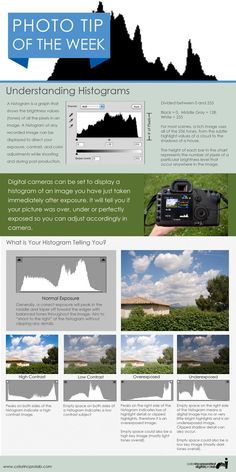 Understanding Histograms...photography tips worth knowing and practicing