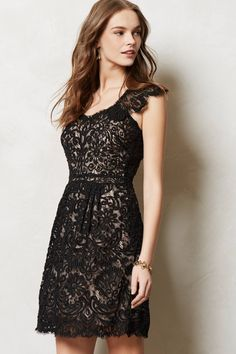 {I'm not a lace dress person but I really like this one!} Vela Dress from @Anthropologie $199.95