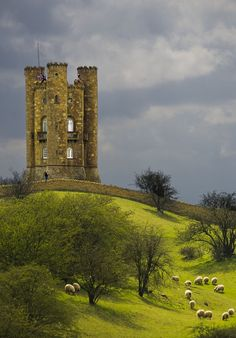 Broadway Tower Worcestershire UK.  Perfect! castle, green hills and sheep at pasture <3