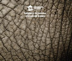 Reserve de Sigean / Etangs de Bages #book #tourdefrance #photographie