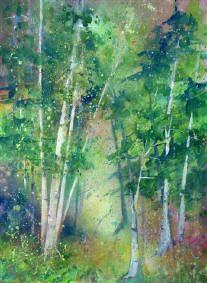 Birches Series