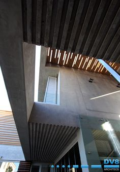 Line in motion. Concrete slab, timber ceiling. #concrete #ceiling #timberceiling