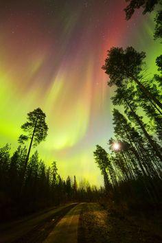 Auroral Burst ~ lighten path ~