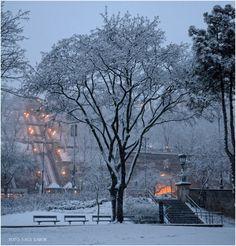 Budapest Bug Puzzle Place, Budapest Hungary, Beautiful Places, Snow, World, City, Hamilton, Winter, Globe