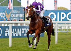 Filly phenom Minding tallied a seventh top-level win Oct. 15 when holding off Ribchester by a half length in the £1.2 million Queen Elizabeth II Stakes (Eng-I) on British Champions Day at Ascot.