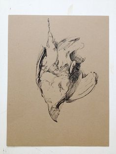 Pheasant no.1 Original Drawing on brown paper by GrayDayStudio