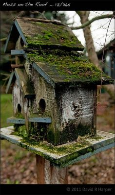I want to make a bunch of rustic bird houses and cover my garden fence with them! Bird Cages, Bird Feeders, Fairy Houses, Dream Garden, Yard Art, Garden Projects, Garden Inspiration, Outdoor Gardens, Garden Design
