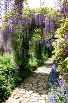 Ideas courtyard garden design wisteria stone path romantic – EMB Borlinghaus - All About Garden Paths, Garden Landscaping, Garden Hedges, Amazing Gardens, Beautiful Gardens, Wisteria Garden, Purple Wisteria, Garden Cottage, Dream Garden