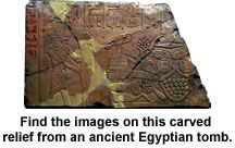 Oriental Institute of U of Chicago  Find carved images from Ancient Egyptian tomb ~ Online Interactive