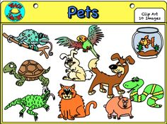 Pets at the Vet Clip Art | Different types, Cats and Different ...