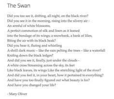 mary oliver owls essay Owls by mary oliver the great-horned owl is one of the most mysterious animals of the world in an excerpt from mary oliver's essay owls, she discusses her fear as.