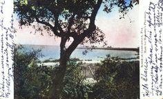 Old Postcard - Scene in Carrabelle, Florida