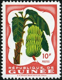 Bananas Forest Fruits, Postage Stamp Art, Deciduous Trees, Birthday Numbers, Stamp Collecting, Bonsai, Vivid Colors, Ephemera, Paintings