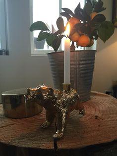 Cool Diy, Arts And Crafts, Vase, Cool Stuff, Home Decor, Cool Things, Homemade Home Decor, Cool Crafts, Flower Vases